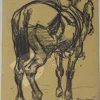 Zombory Lajos - Hátasló hátulról